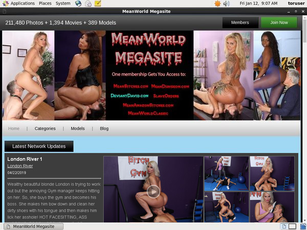 Mean World Pay With Paypal